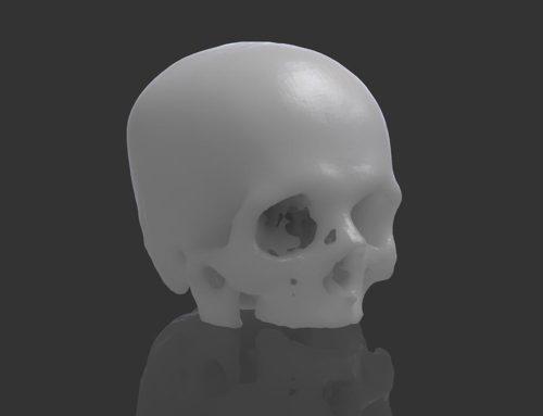 Calavera real escaneada en 3D.