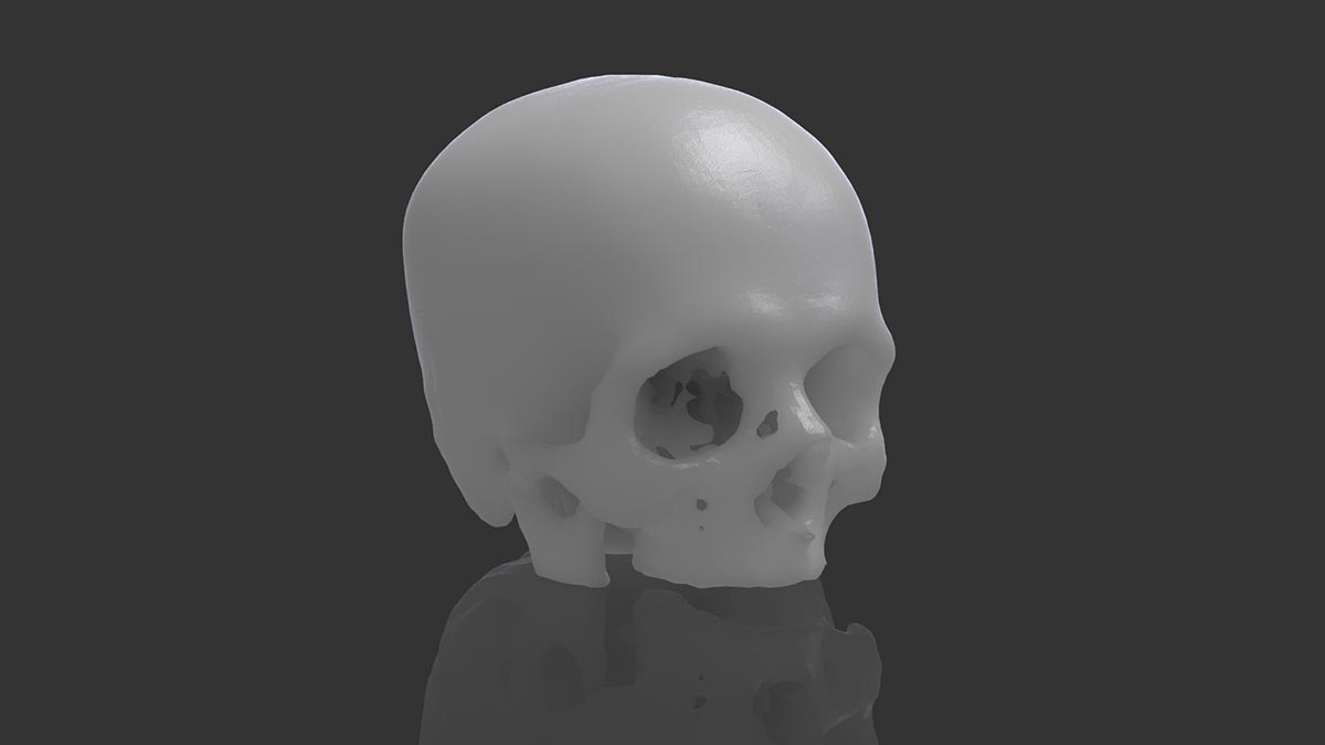 Calavera escaneda en 3D